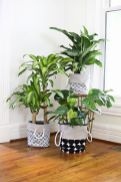 Amazing DIY Planter Ideas for inspiration Part 9