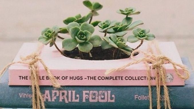 Creative DIY Planter designs out of scrap materials for inspiration Part 28