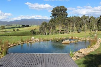 Natural swimming pools designs using plants or a combination of plants and sand filters Part 16