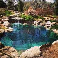 Natural swimming pools designs using plants or a combination of plants and sand filters Part 19