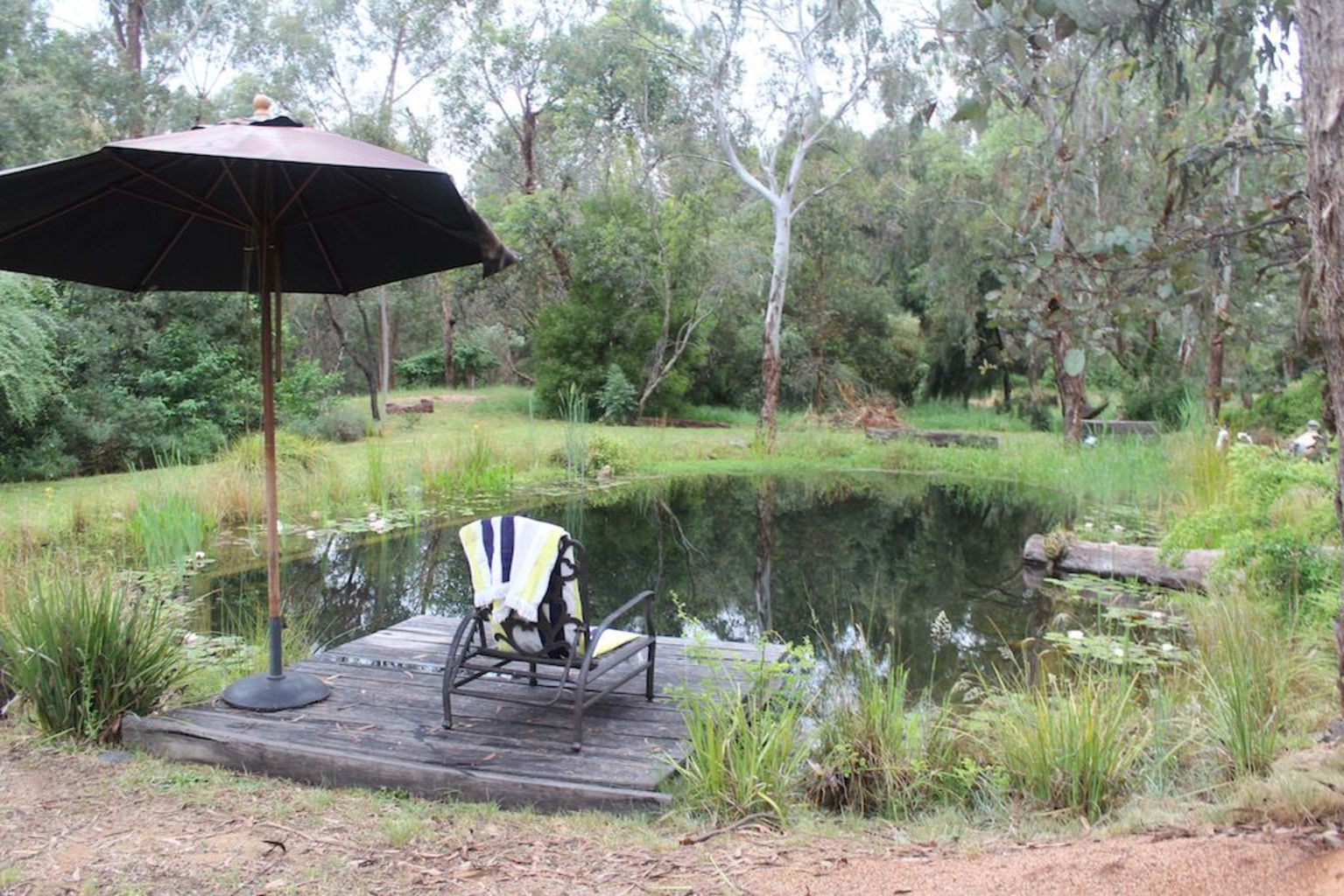 Natural swimming pools designs using plants or a combination of plants and sand filters Part 20