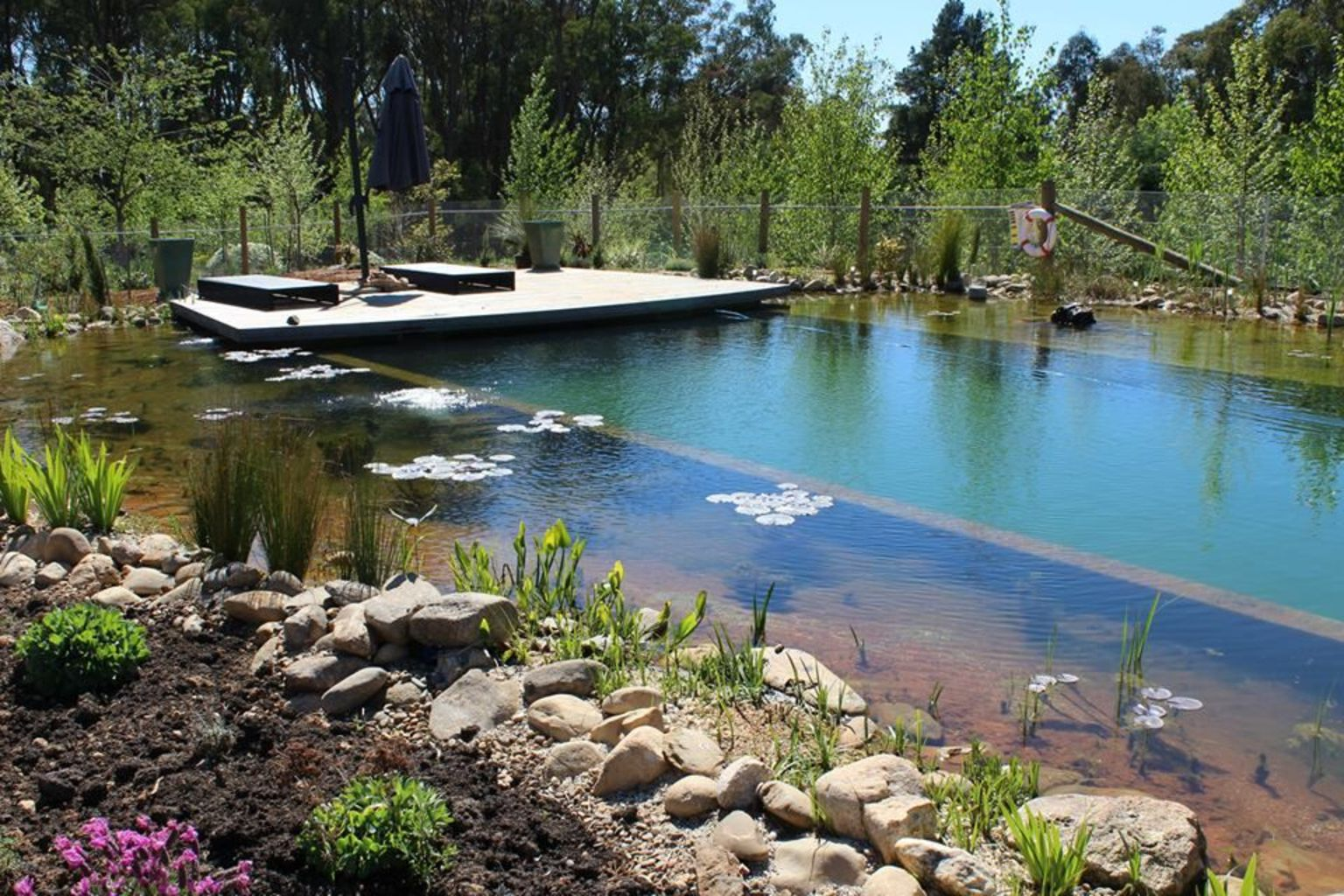 Natural swimming pools designs using plants or a combination of plants and sand filters Part 24