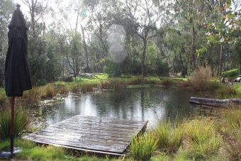 Natural swimming pools designs using plants or a combination of plants and sand filters Part 27