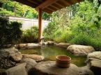 Outdoor showers and bath perfect for beach homes cabins and tropical climates Part 10