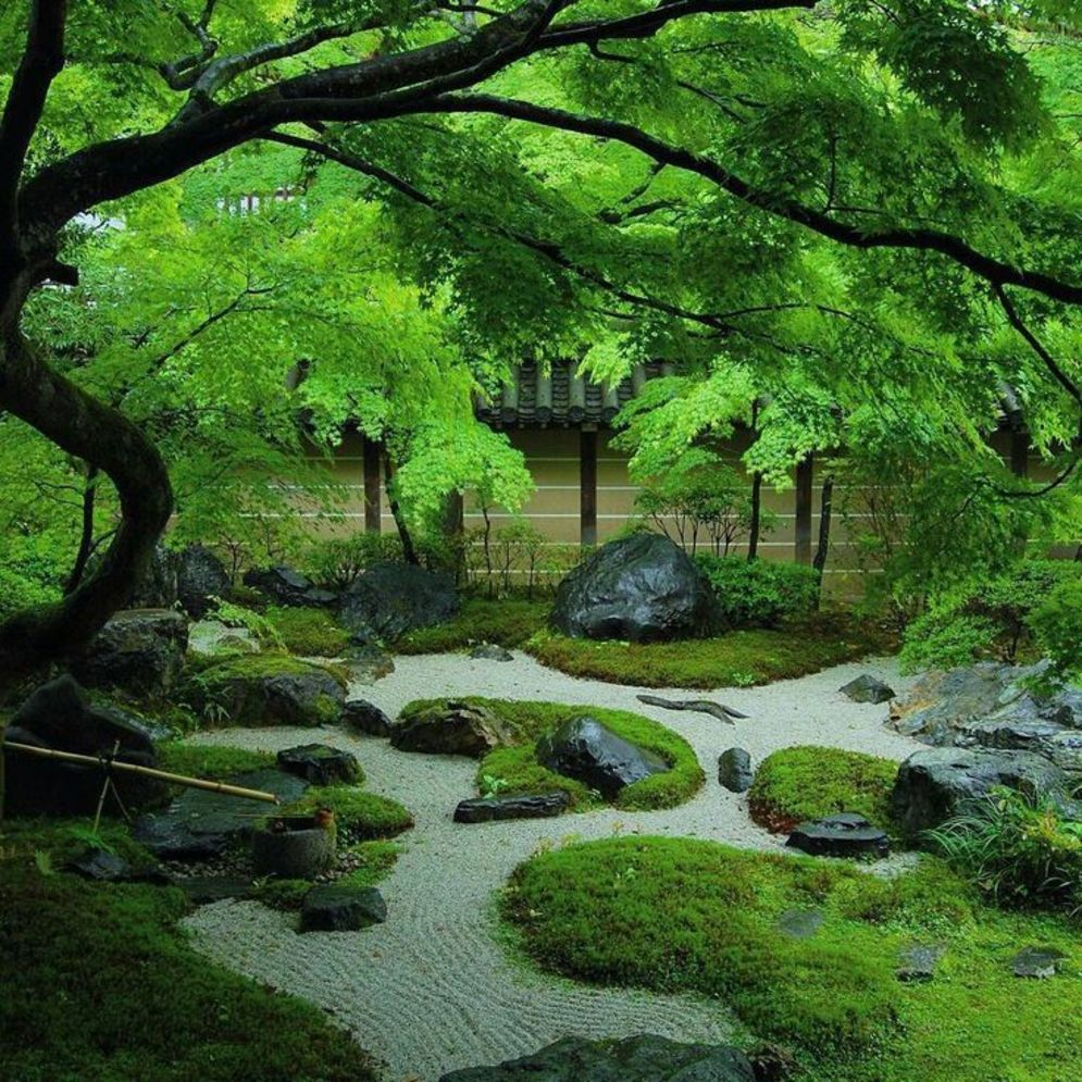 Beautiful Zen garden style with peaceful arrangements creating peaceful and harmonies display that will calm our mind Image 4