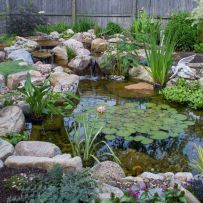Best small waterfall designs giving the best natural refreshment in such a brilliant backyard with water features Image 23