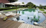 Best trending natural swimming pool with natural fresh cleanwater filter system (12)