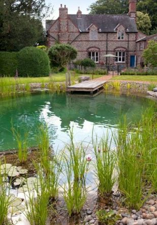 Best trending natural swimming pool with natural fresh cleanwater filter system (13)