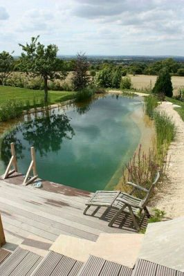 Best trending natural swimming pool with natural fresh cleanwater filter system (14)