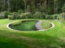 Best trending natural swimming pool with natural fresh cleanwater filter system (16)