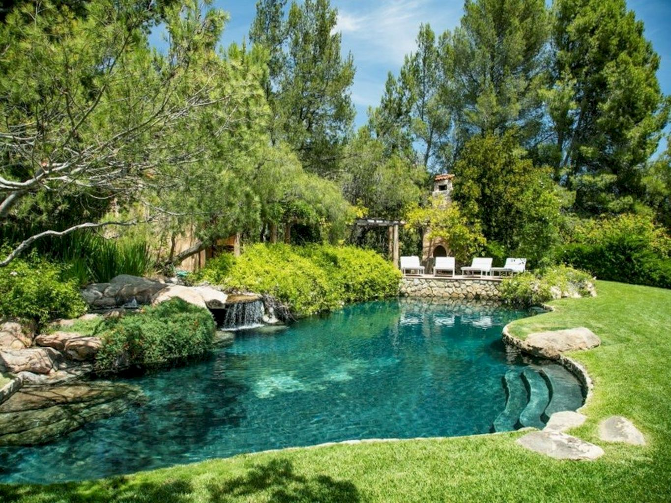 Best trending natural swimming pool with natural fresh cleanwater filter system (4)