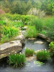 Best water garden style rich of natural accents with stones and aquatic plants compositions Image 5