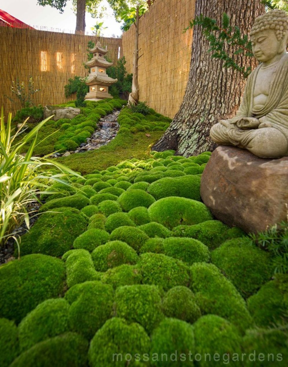 Green outdoor ideas with calming vibes from Zen garden style showing harmonious and balanced various natural elements Image 31