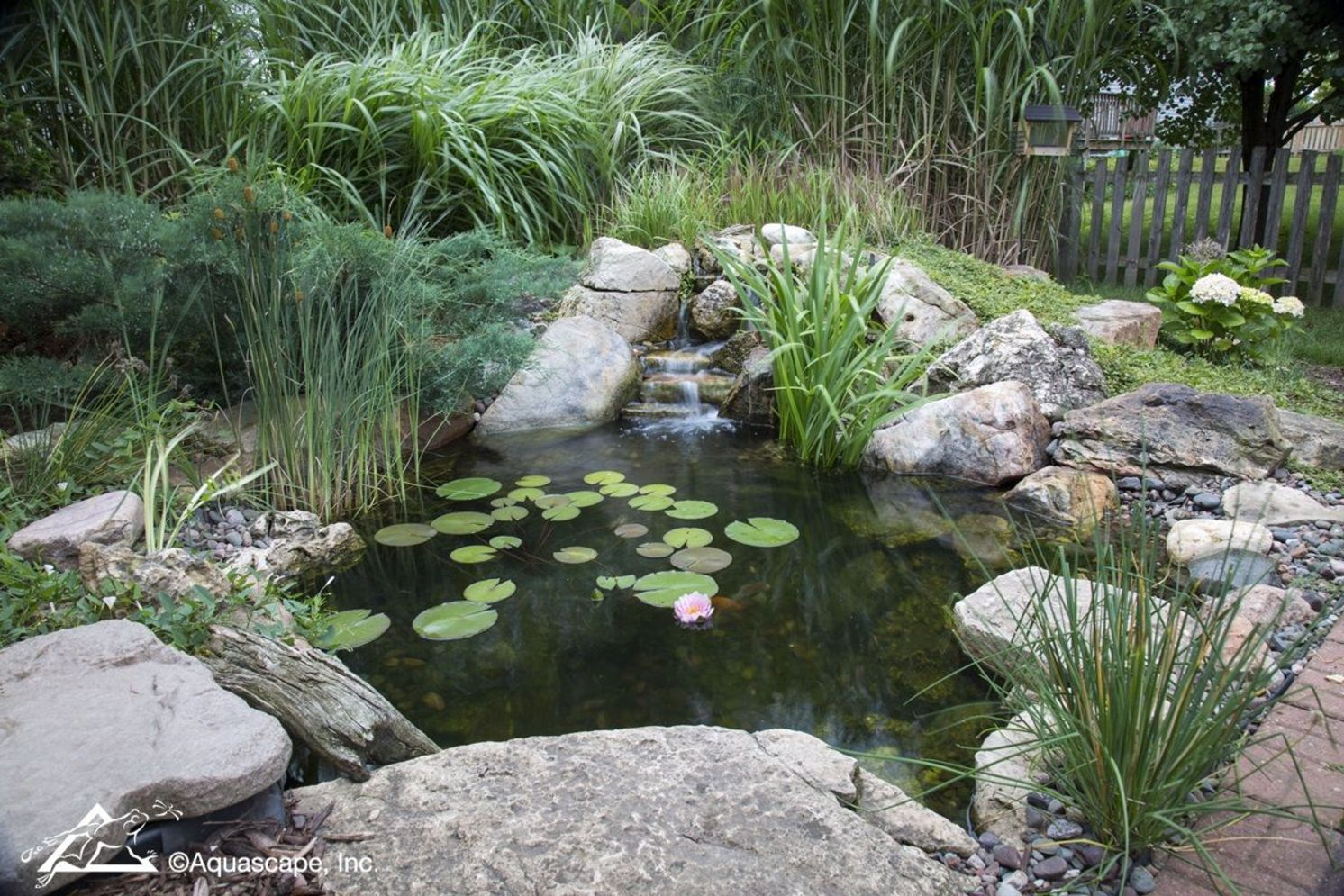 Inspiring small fish pond designs to upgrade the outdoor landscape for more lively and refreshing Image 33