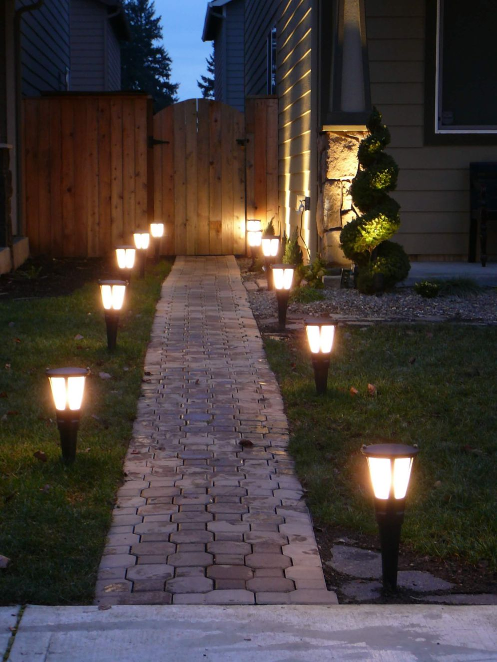 Lavish garden upgrade showing beautiful outdoor light schemes that liven up the landscape view Image 41