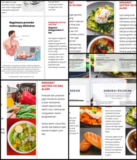 ebook gastrik, panduan gastrik, penyelesaian gastrik