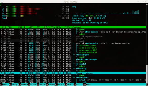 htop 2.0 apariencia en ejecución