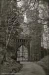 Ashford Castle. Co. Mayo