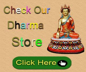 Dharma Store