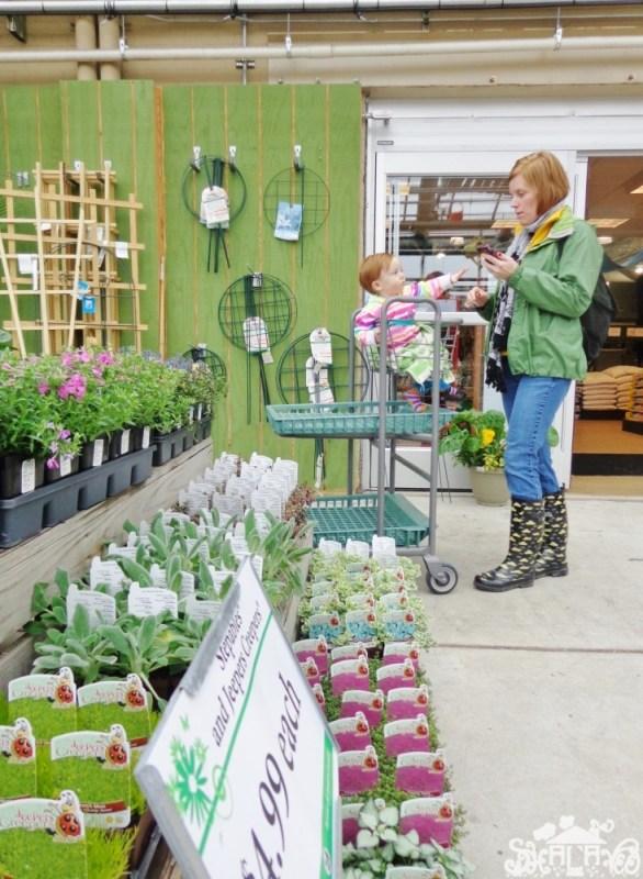 Homestead Gardens from Shalavee.com