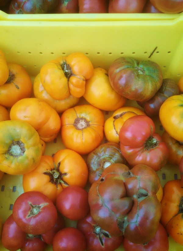 farmers market tomatoes from the clean eating challenge on shalavee.com