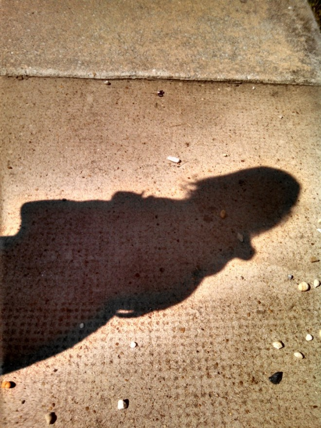 shadow from Shalavee.com