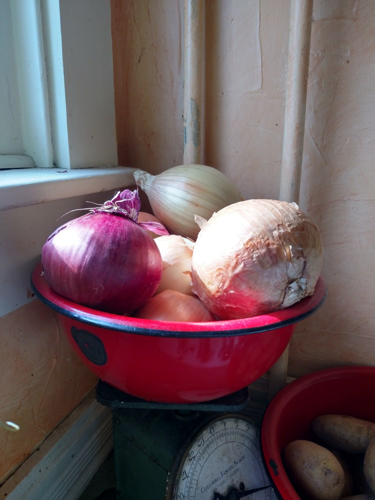onions in a bowl on Shalavee.com