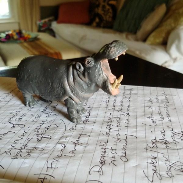 My Blockage is Hilda the Hippo