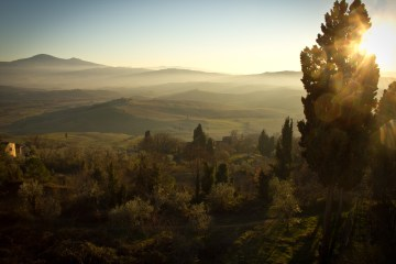 Pilgrimage to Assisi