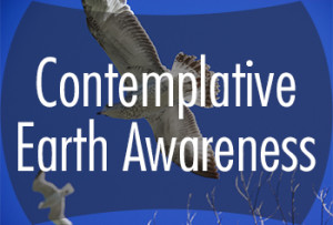 earthawareness_small