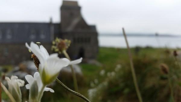July eNews: To be a pilgrim