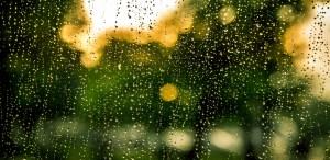 Rain—An Icon of Grace