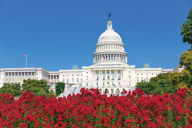 Capitol building Washington DC pink flowers garden USA congress Legislation Under Pressure SHALE Oil & Gas Business Magazine