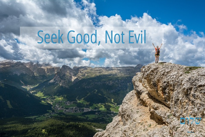 seek good and not evil shalom101