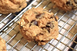 Fruit Sweetened Chocolate Chip Cookies (Grain Free, Vegan, Oil Free)