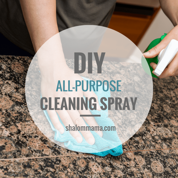 DIY all-purpose cleaning spray