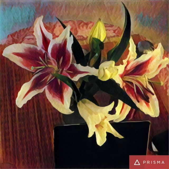 Oriental-lillies-friday-fiction-ubc-blog-blogchatter-dailychatter