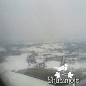 kashmir-travel-diaries-snow-dream-snowfall-srinagar-india-travels-girl-traveller-solo-traveller-kashmir-travels