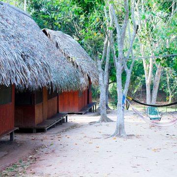 Shining Heart Peru: Evolutionary Ayahuasca & Amazonian Plant Dieta Retreat Center