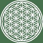 Flower of Life Logo
