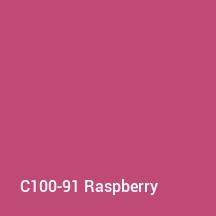 C100-91 Raspberry