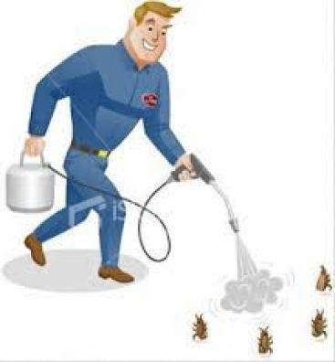 شركة مكافحة حشرات بأبها 0542046241