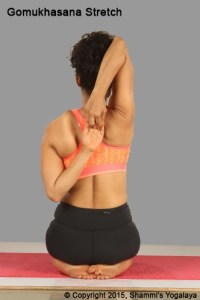 Gomukhasana Stretch in Vajrasana