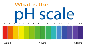 What-is-pH-scale