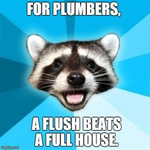 """Meme of a raccoon face on a blue backdrop with the text """"For plumbers, a flush beats a full house""""."""