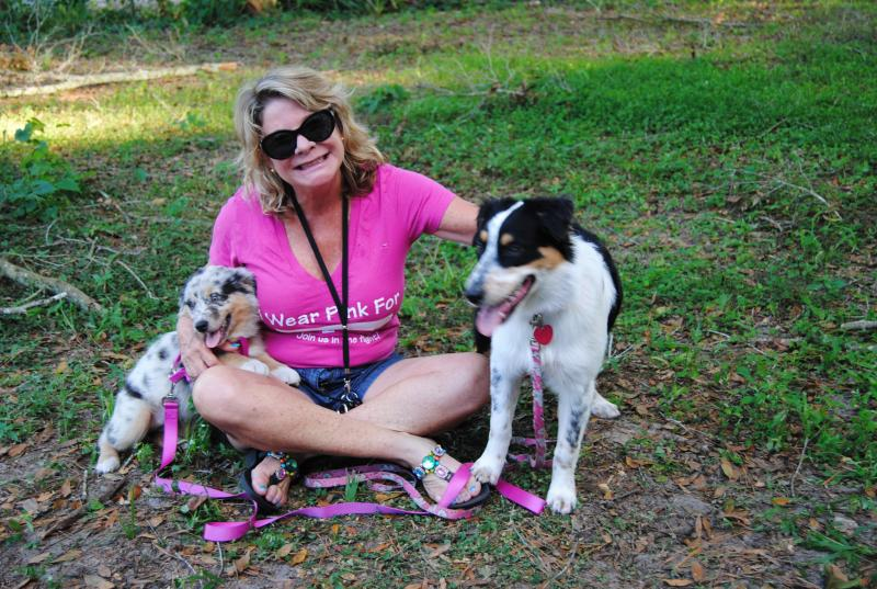 Shamrock Rose Aussies EXCITING NEWS Summer Litters