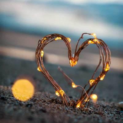 hjertets vej forløb