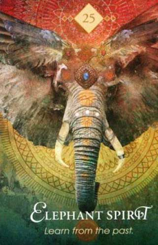 spirit animal tarotkort elefant