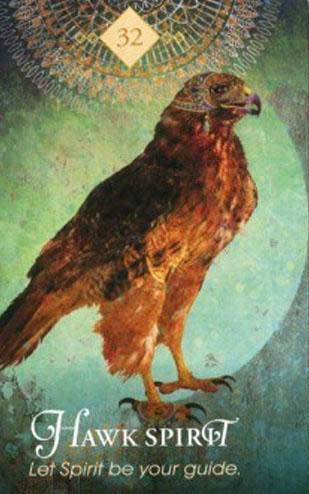 spirit animal tarotkort høg
