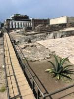 Excavation Near the Catedral Metropolitana
